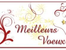 MEILLEURS VŒUX POUR 2016